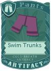Swim Trunks Purple