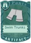 Swim Trunks Grey