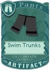Swim Trunks Black