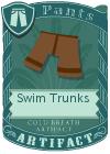 Swim Trunks Brown
