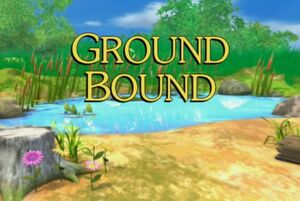 Sunny Patch Ground Bound