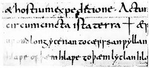 Angelsächsische Schrift RdGA Band 1 Tafel 05-08.jpg