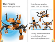 Flexers book page