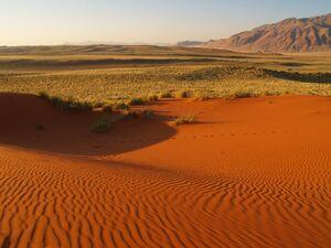 Kalahari-desert-namibia-640x480