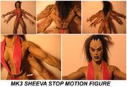 Sheeva model