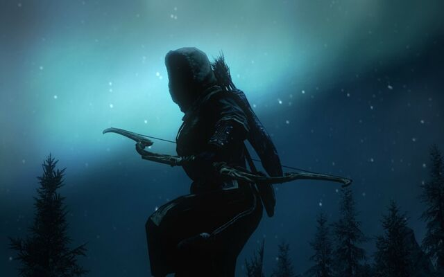File:Video games the elder scrolls v skyrim archer 1280x800 wallpaper www.wallpapermay.com 15.jpg