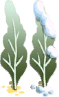 File:Pale Bush.png