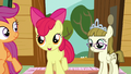 Apple Bloom encouraging Sweetie Belle S7E6.png