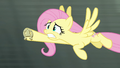 Fluttershy flying at high speed S4E10.png