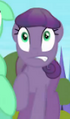 Crystal earth mare purple S3E02.png