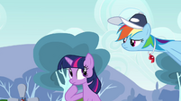 Rainbow Dash & Twilight uhh... S2E22