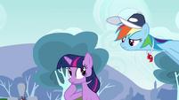 Rainbow Dash & Twilight uhh... S2E22