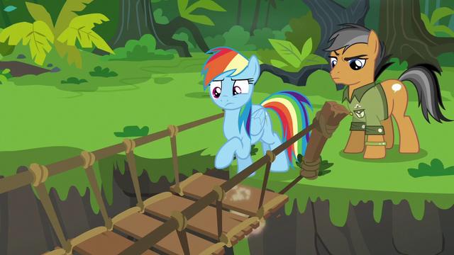 File:Rainbow Dash testing the suspension bridge S6E13.png