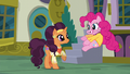 Pinkie Pie doing the Piggy Dance S6E12.png