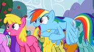 Rainbow Dash and her cider addiction S2E15