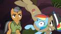 Biff tackling Rainbow Dash S6E13.png