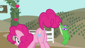 Gummy dangling from Pinkie's tail S4E03.png
