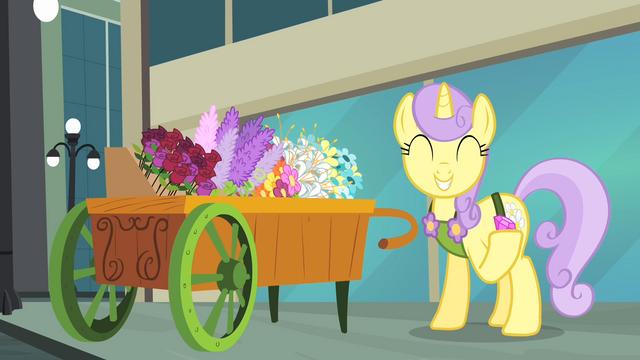 File:Pony receiving gem S4E08.png