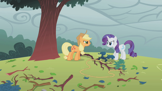 File:Applejack and Rarity fighting over tree branch S1E8.png
