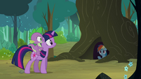 Rainbow Dash calling Twilight from under a tree S3E03