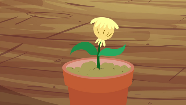 File:The seedling S4E15.png