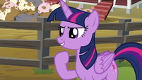 "Twilight Sparkle ""let's do this!"" S6E10"