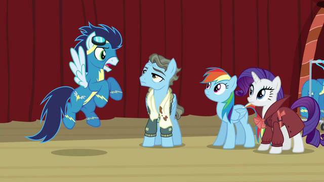 """File:Soarin """"to make it there and back"""" S5E15.png"""