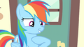 "Rainbow Dash ""who here besides me"" S4E24.png"