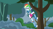 Rainbow Dash spies on Crystal Prep EG3