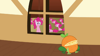Pinkie Pie clone 'Is that a frog crossed with an orange' S3E3