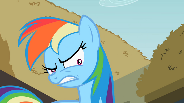 File:Rainbow Dash shrinking pupils S2E8.png