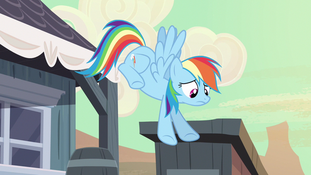 File:Rainbow Dash why didn't S2E14.png