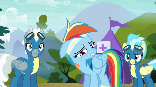 """File:Rainbow Dash """"been my dream my whole life"""" S6E7.png"""