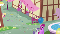 Daisy, Lily, and Rose in Ponyville S4E12.png