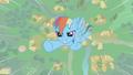 Rainbow Dash flying upward S1E06.png