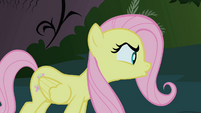 Fluttershy talks to the Cockatrice S1E17