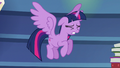 Ladder crashes behind Twilight Sparkle S6E21.png