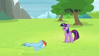 Rainbow Dash lying in the grass S4E10