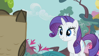 Rarity looks at Owlowiscious S1E24