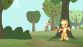 Applejack hides behind a tree S4E13.png