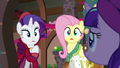 Flutterholly and Merry shocked of Snowfall's appearance S06E08.png