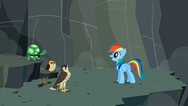 File:Rainbow Dash with Tank and the flyers S2E07.png