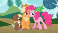 Pinkie Pie and Applejack S02E07.png
