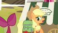 """Applejack """"is a big responsibility"""" S4E17.png"""