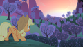Applejack waiting for the sunrise S4E07.png