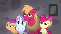 Big Mac, Apple Bloom, and Scootaloo mad; Sweetie Belle smiling S7E8.png