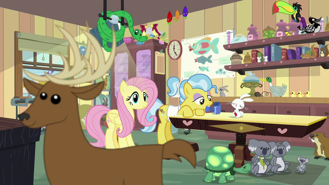 File:Fluttershy sees deer crossing in front of screen S7E5.png