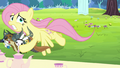 Fluttershy saves animals from getting smashed S5E11.png