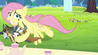 Fluttershy saves animals from getting smashed S5E11