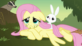 Fluttershy with grass on her face S2E22.png